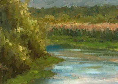 arcata-marsh